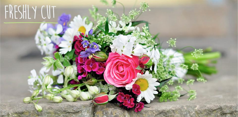 Seasonal British flowers from a country garden